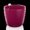CLASSICO Color 28 purple garnet