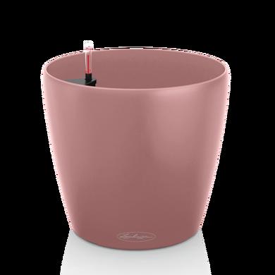 CLASSICO Color 35 pearl rose