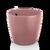 CLASSICO Color 43 pearl rose Thumb