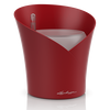 ORCHIDEA ярко-красный матовый Thumb