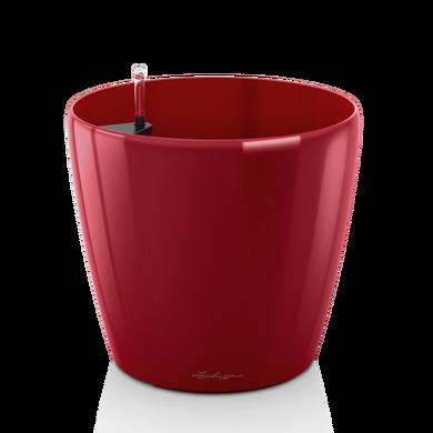 CLASSICO 70 rouge scarlet brillant