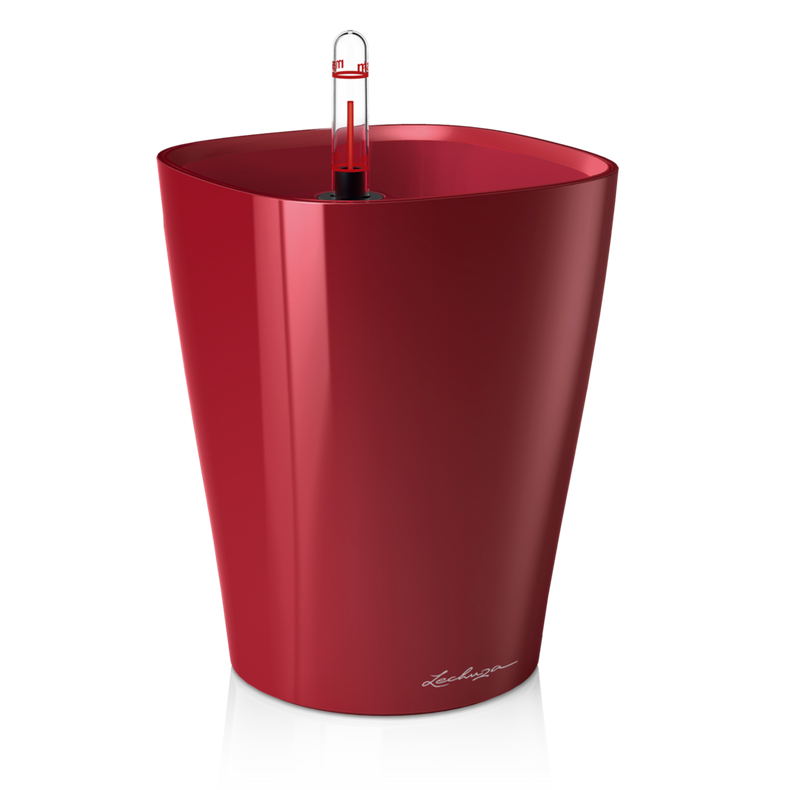 DELTINI scarlet red high-gloss