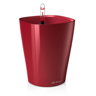 DELTINI rouge scarlet brillant