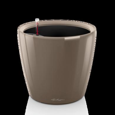 CLASSICO LS 21 серо-коричневый блестящий
