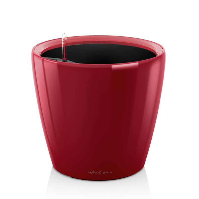 CLASSICO LS 21 scarlet red high-gloss