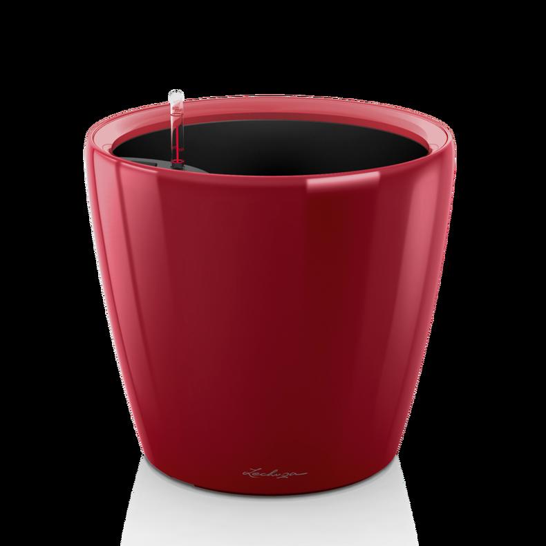 CLASSICO LS 43 rosso scarlatto lucido