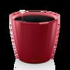 CLASSICO LS 43 scarlet rot hochglanz thumb