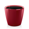 CLASSICO LS 50 rouge scarlet brillant