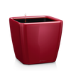QUADRO LS 21 scarlet red high-gloss Thumb
