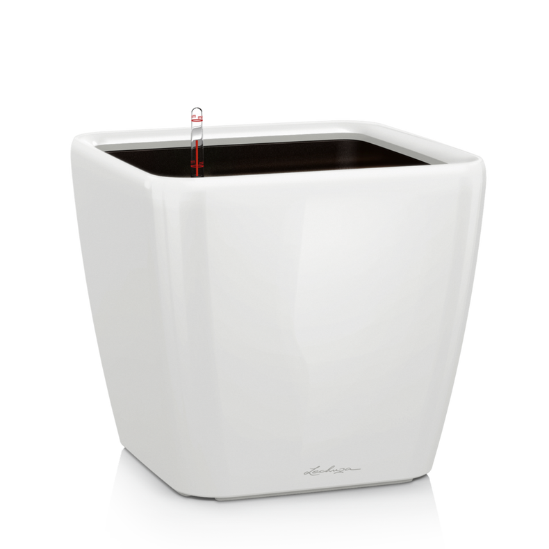 QUADRO LS 28 white high-gloss