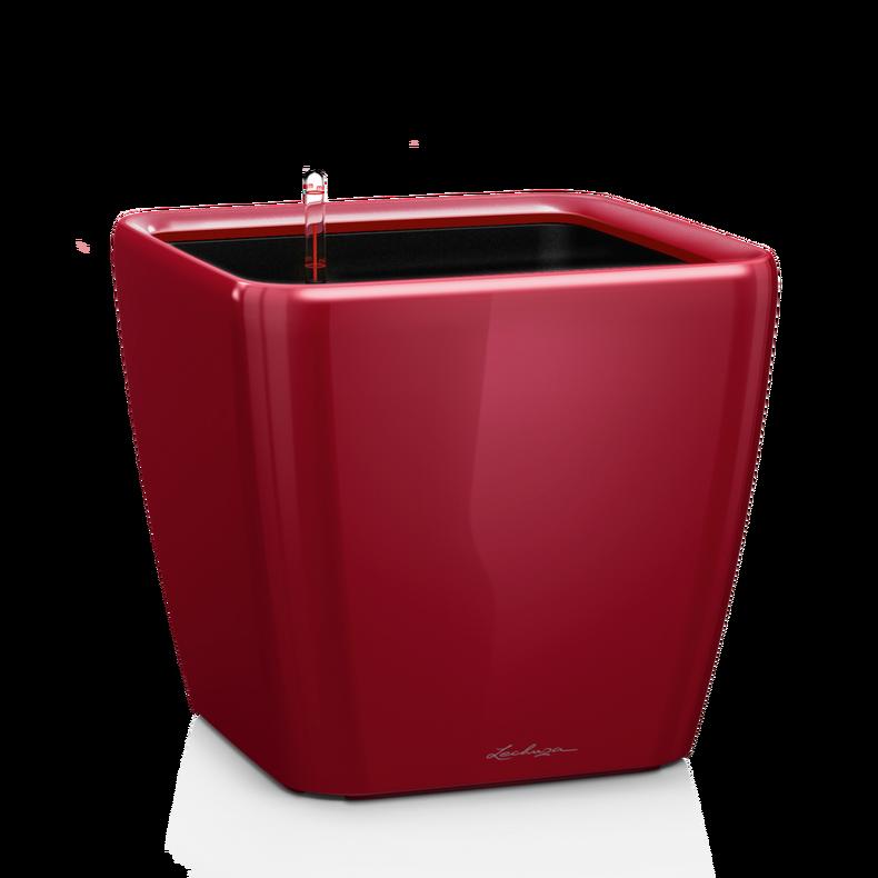 QUADRO LS 28 scarlet red high-gloss