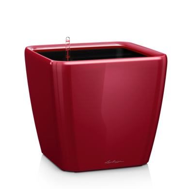 QUADRO LS 28 scarlet red high-gloss