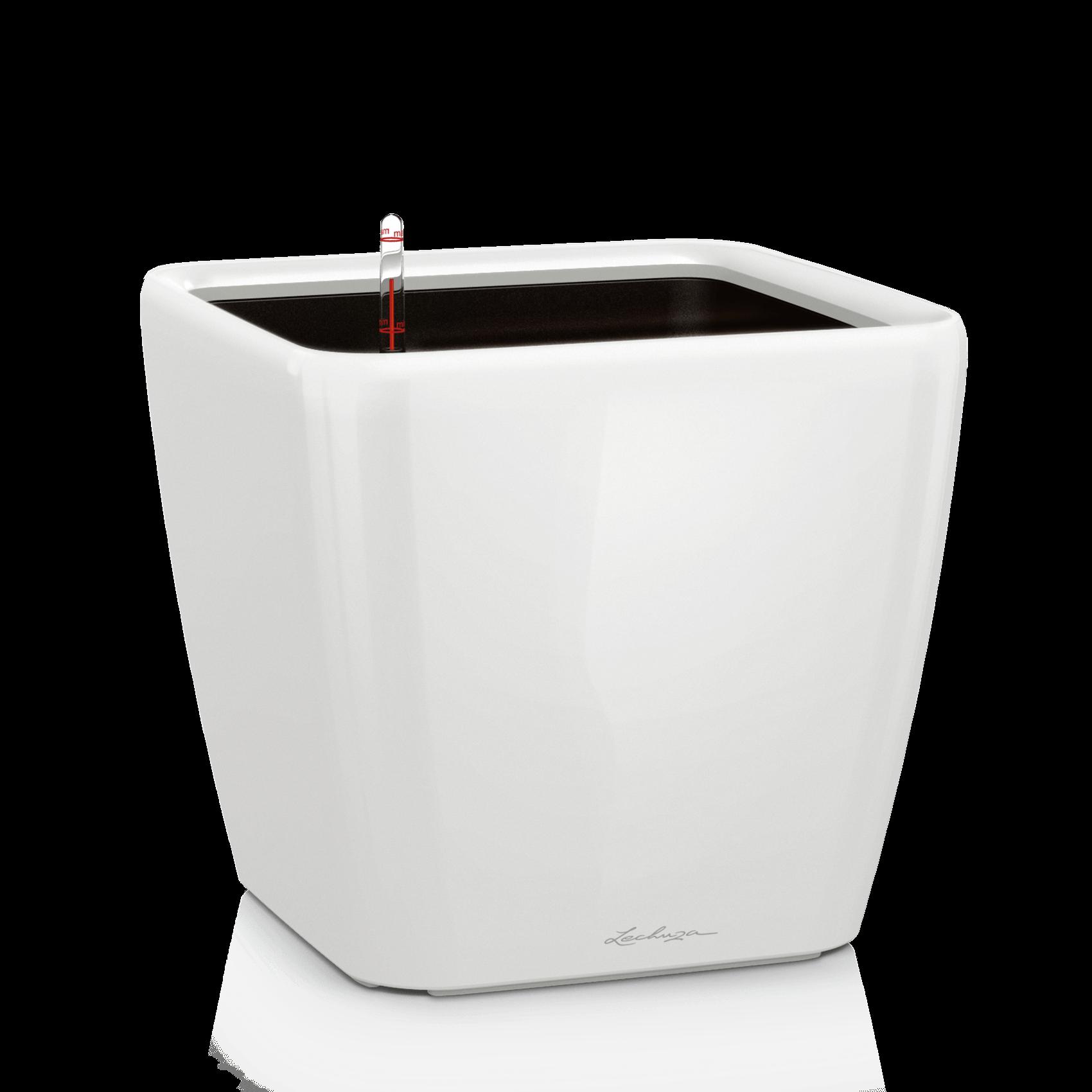 QUADRO LS 50 white high-gloss