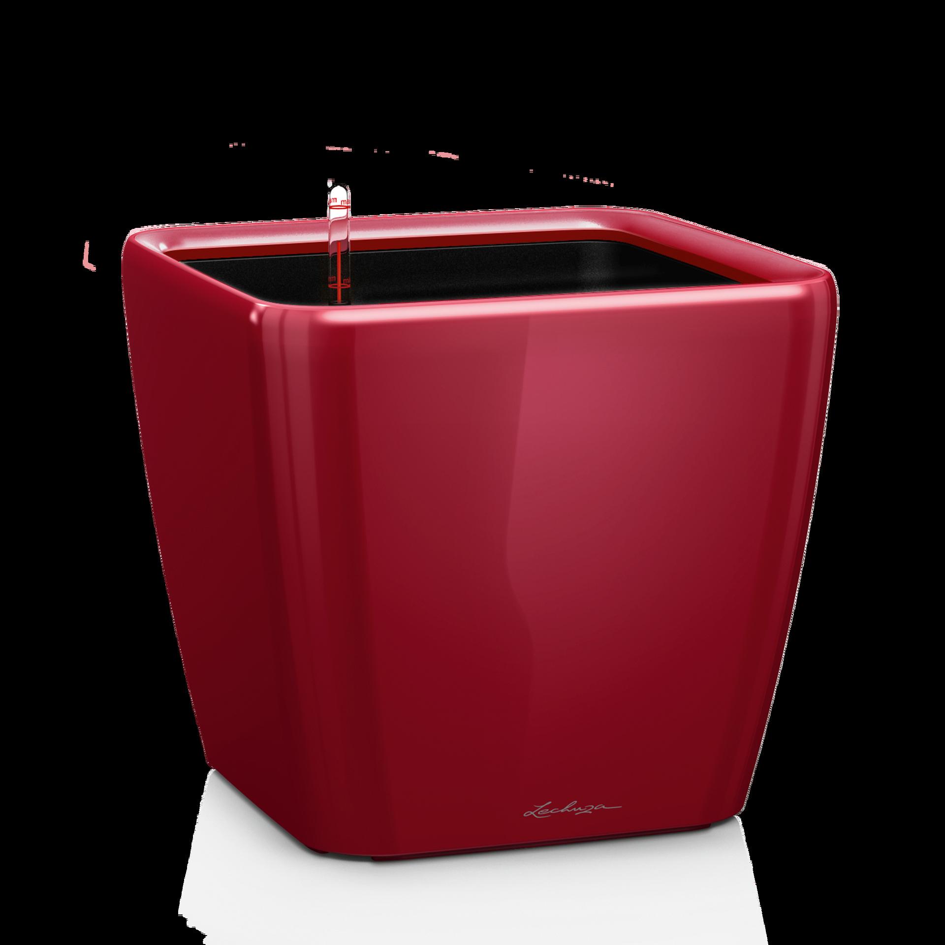 QUADRO LS 50 scarlet red high-gloss