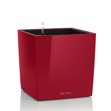 CUBE 30 rojo escarlata muy brillante