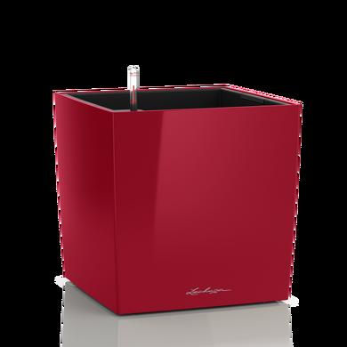 CUBE 50 rouge scarlet brillant