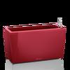 CARARO scarlet red high-gloss Thumb