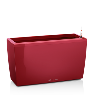 CARARO scarlet red high-gloss