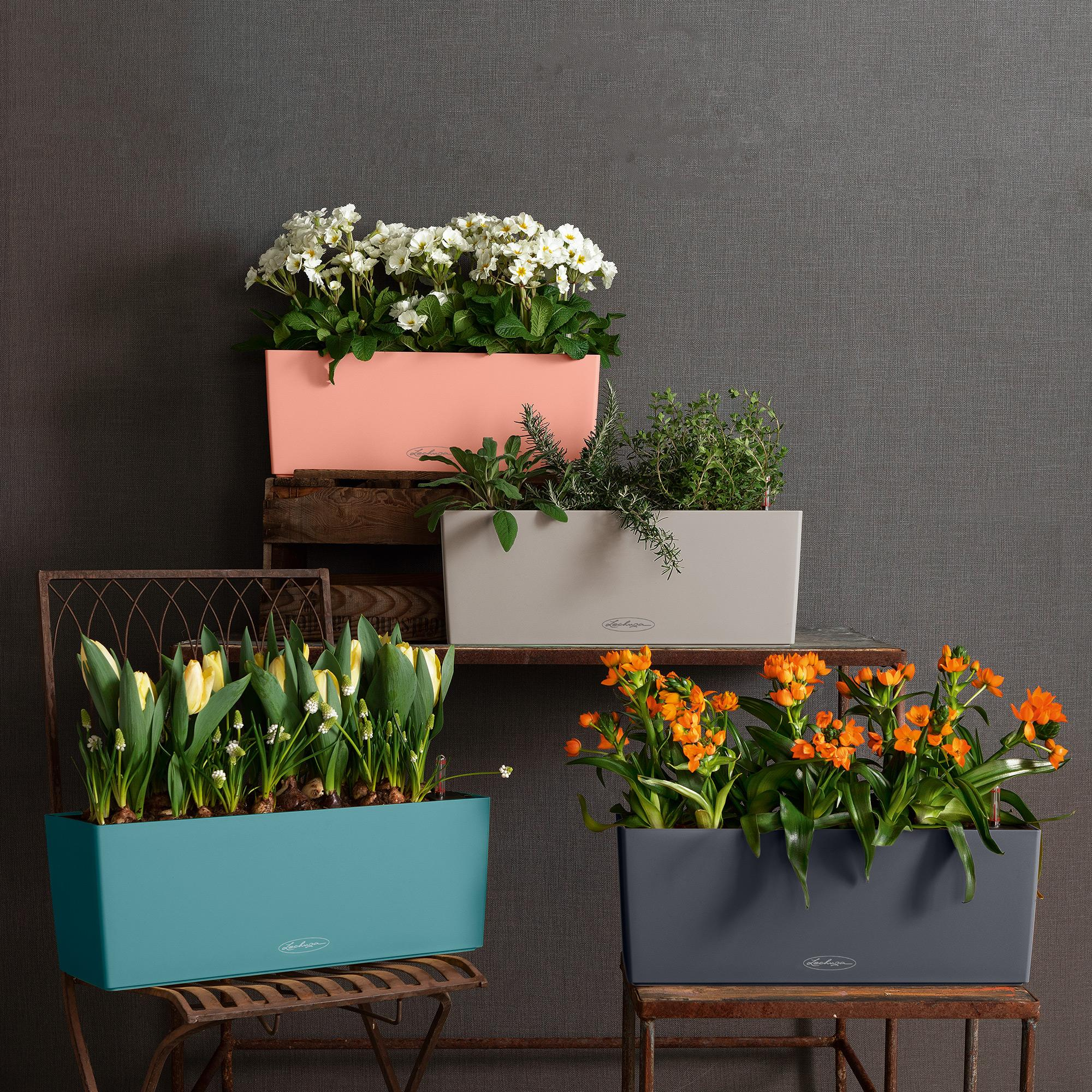 le_balconera-color50_product_addi_01