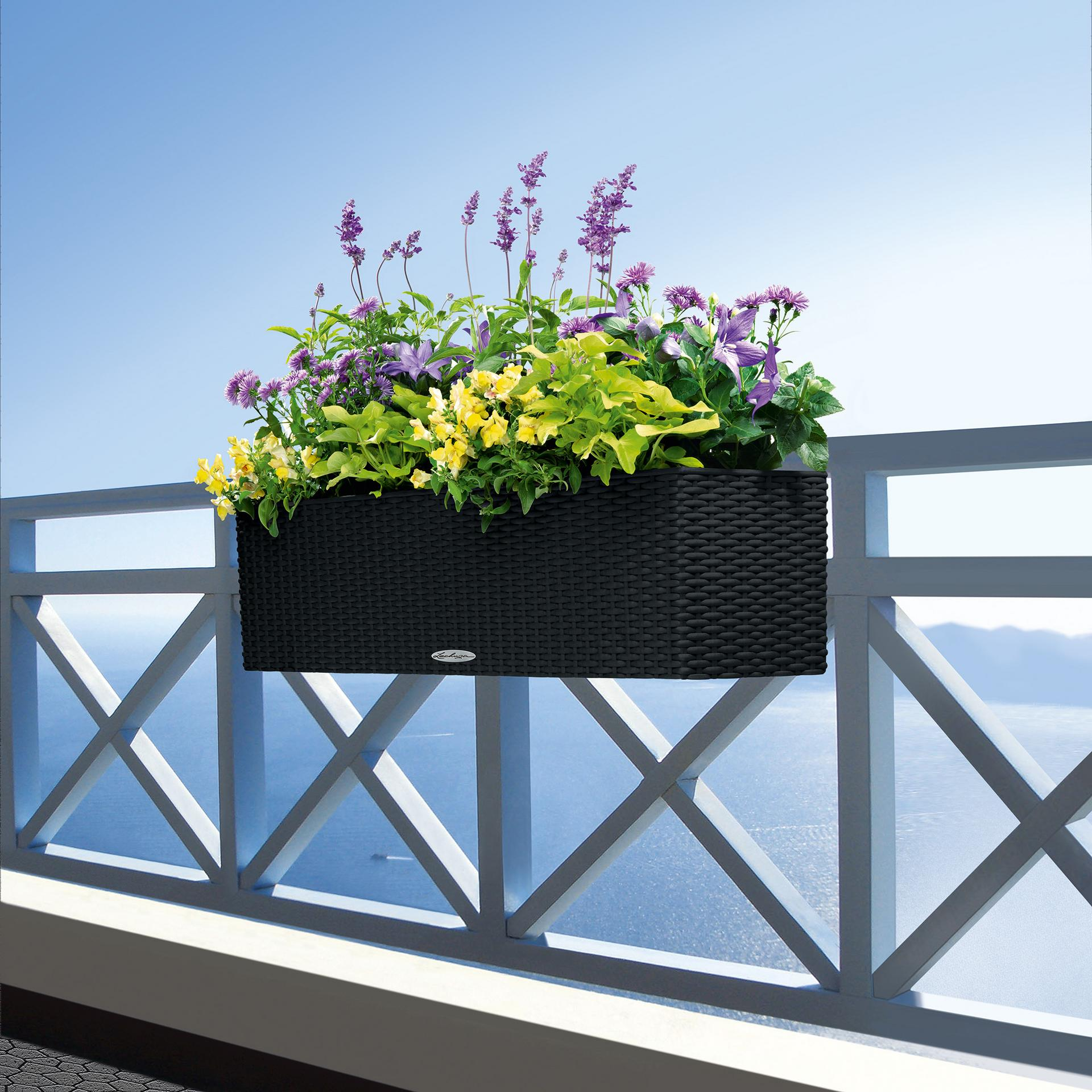 le_balconera-cottage80_product_addi_02
