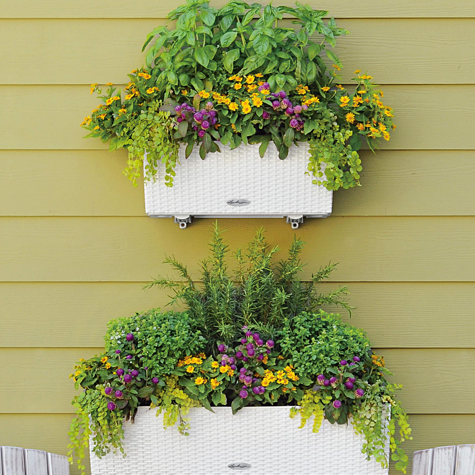 le_balconera-cottage_product_addi_02