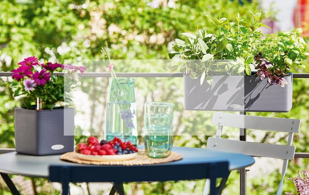 'Das perfekte Sommer-Duo - CUBE Color und CUBE Color Triple