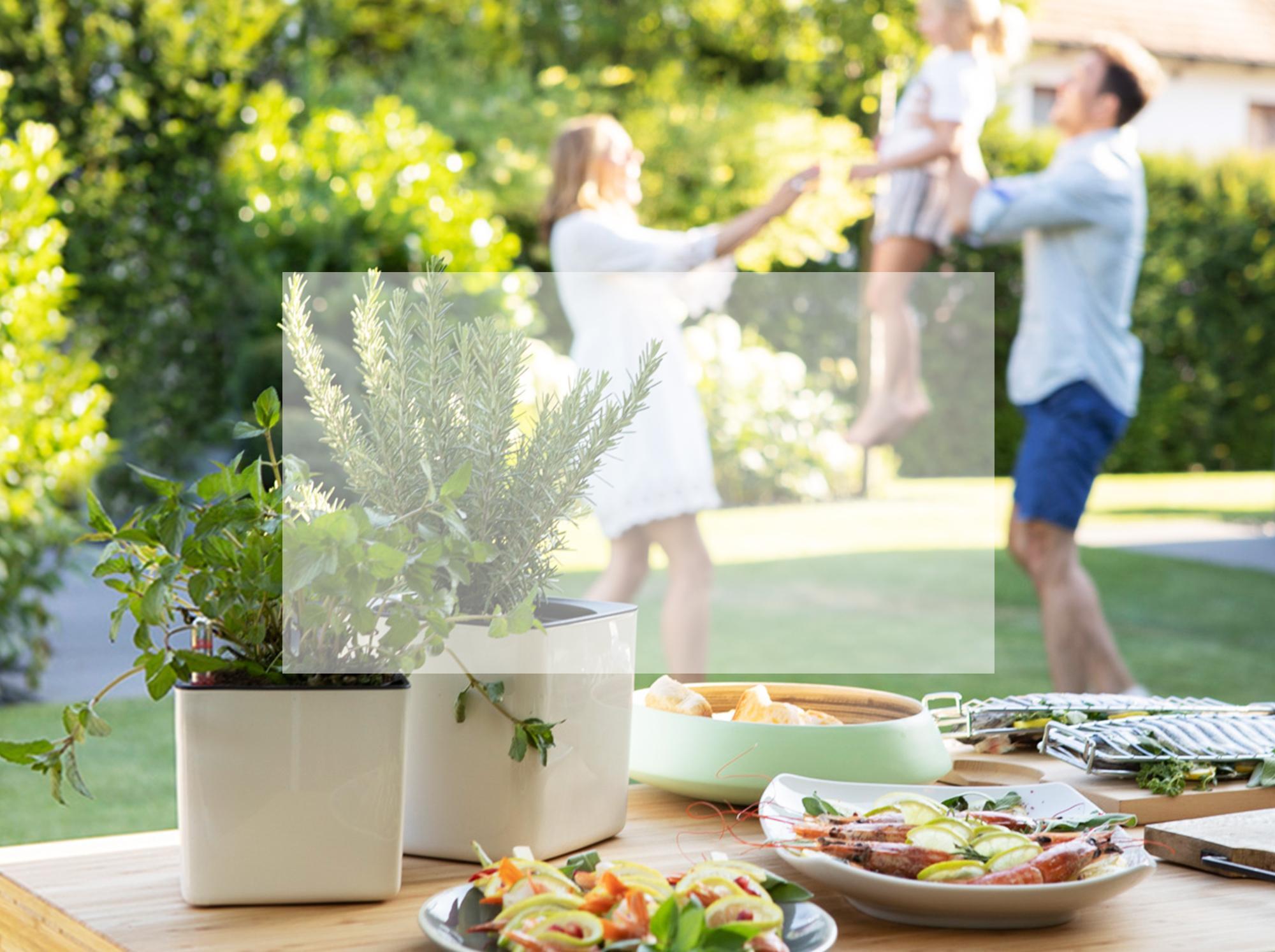 Les pots parfaits pour les herbes aromatiques : CUBE Glossy