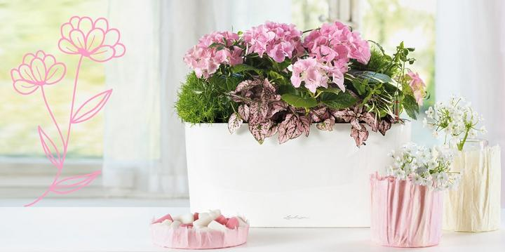 Spring ideas with DELTA 20