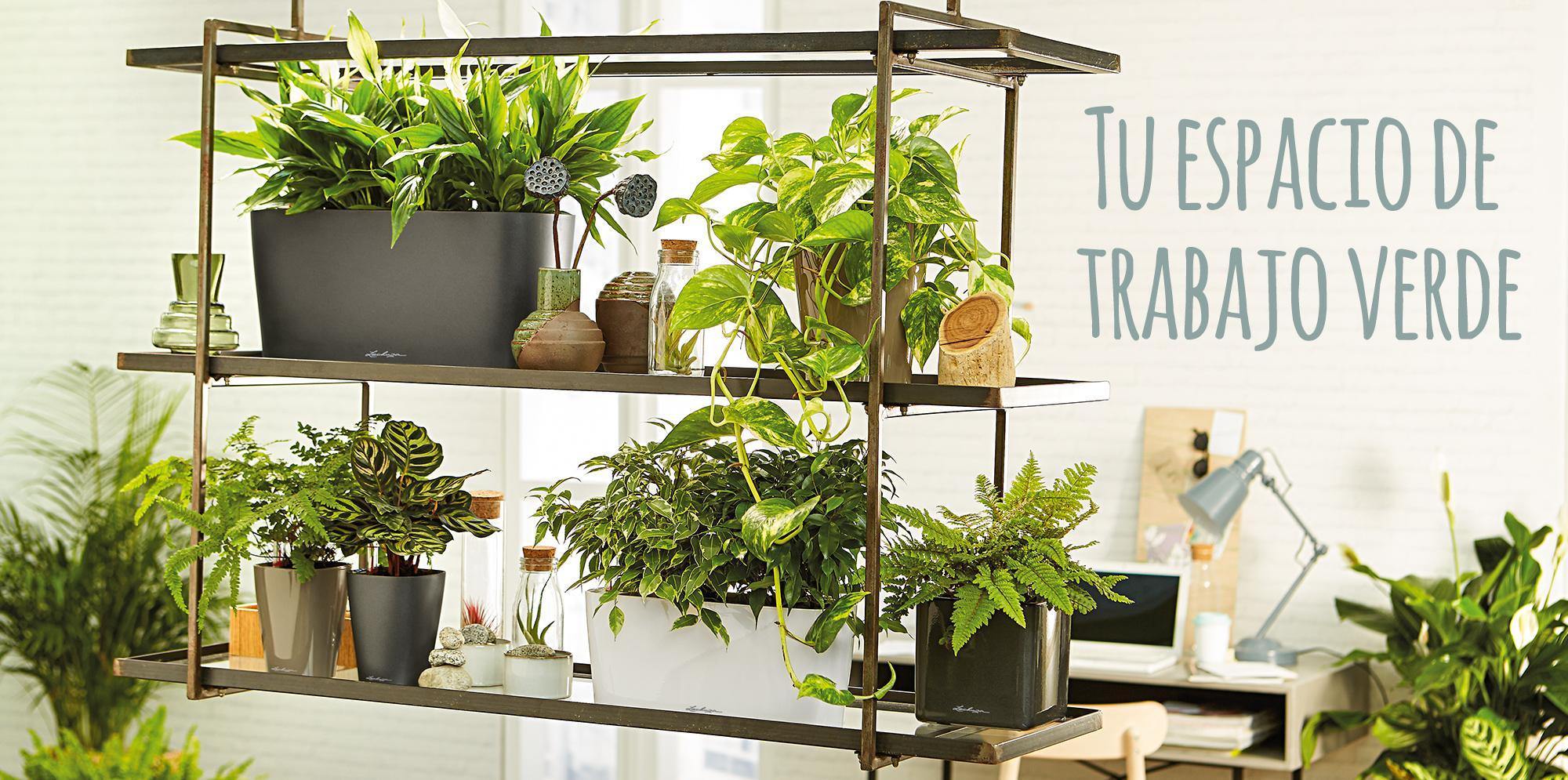 DELTA 10 / 20: Tu espacio de trabajo verde