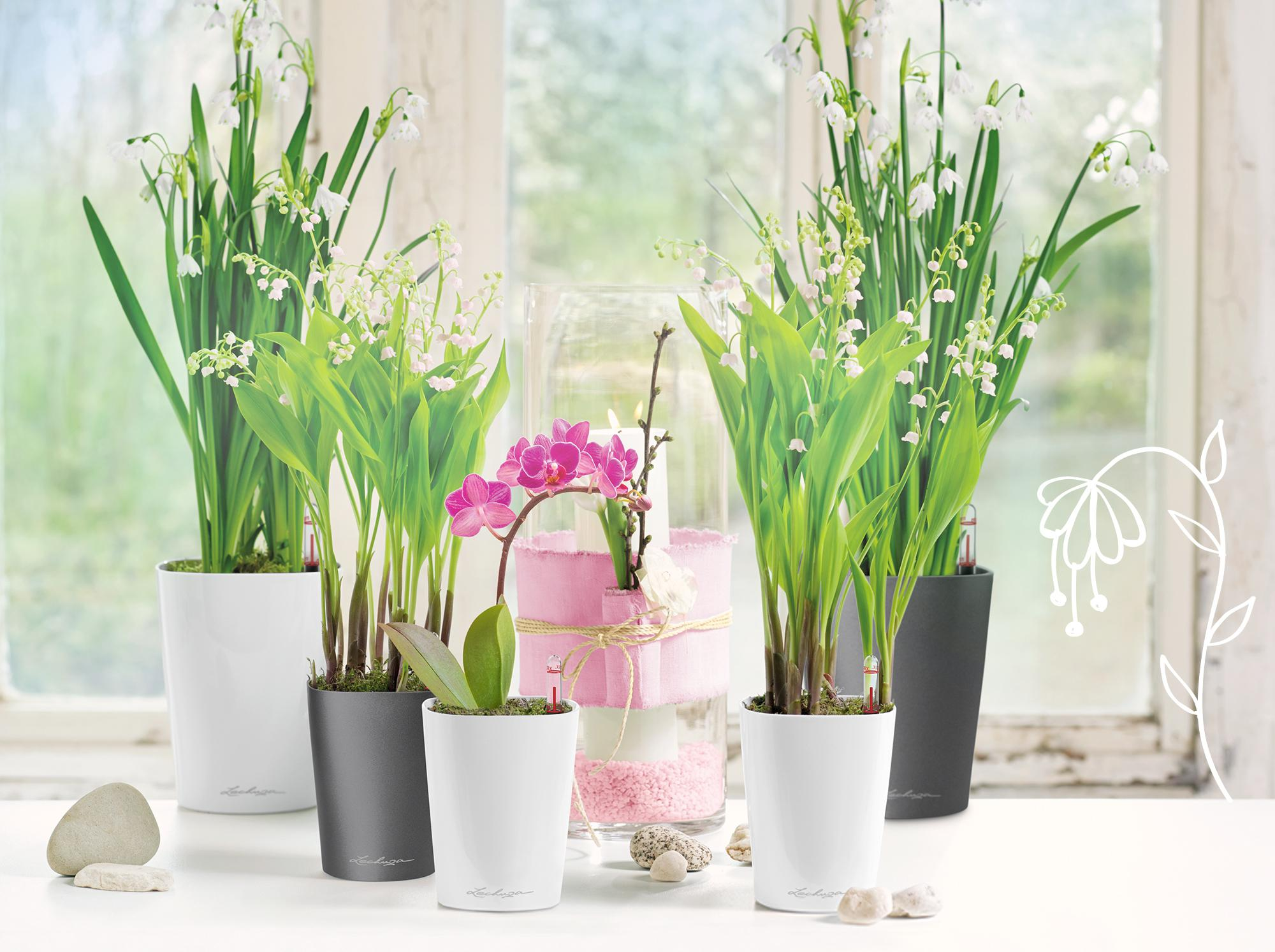 Spring decoration with the DELTINIs