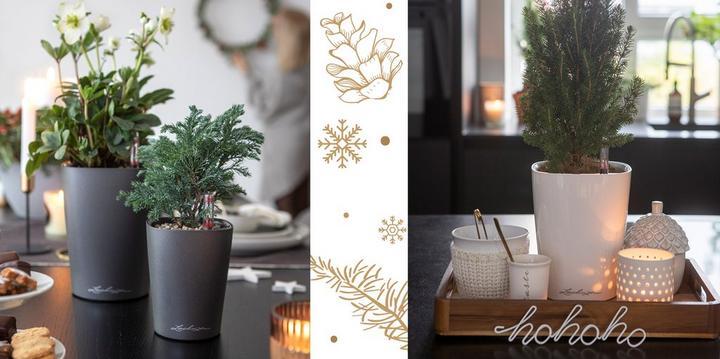 Рождественские украшения с дельтинами