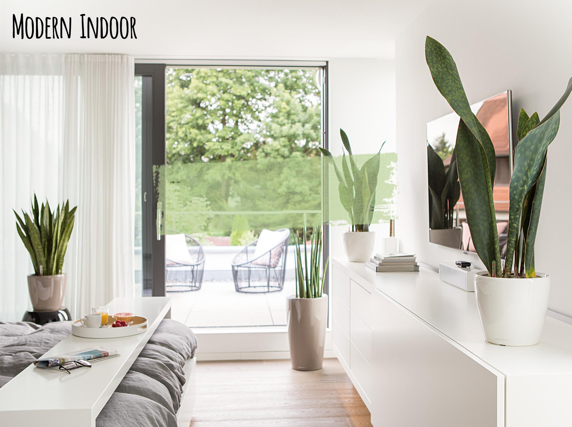 Modern indoor premium collection