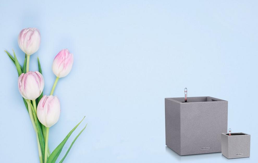 Special Offers on Planters by creating Sets