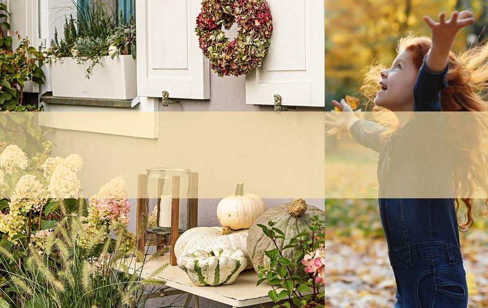 Autumn ideas with LECHUZA