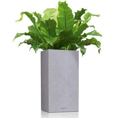 canto-stone-saeule_product_listingimage