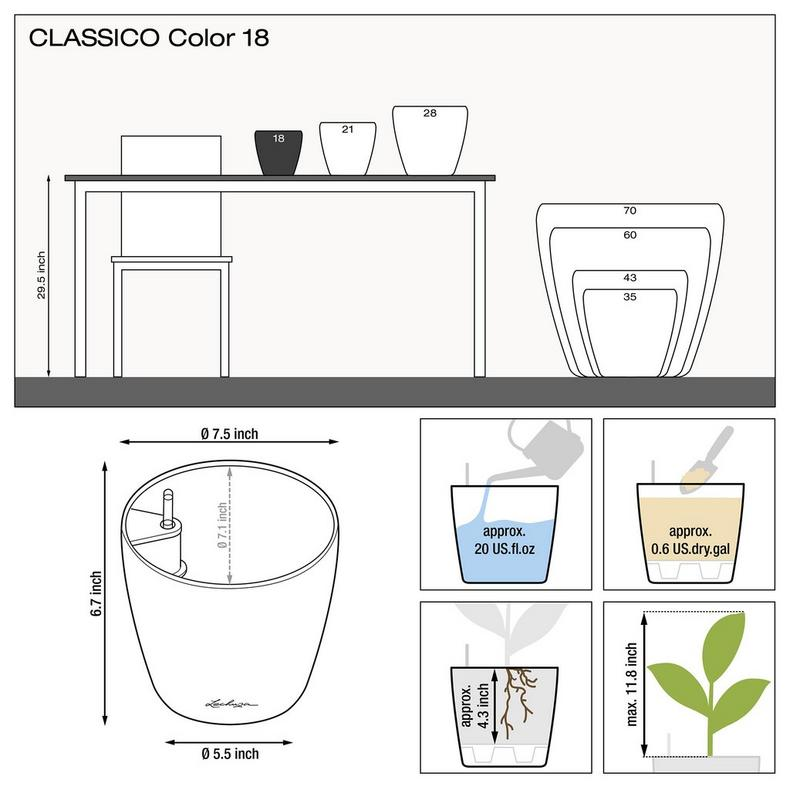 le_classico-color18_product_addi_nz_us
