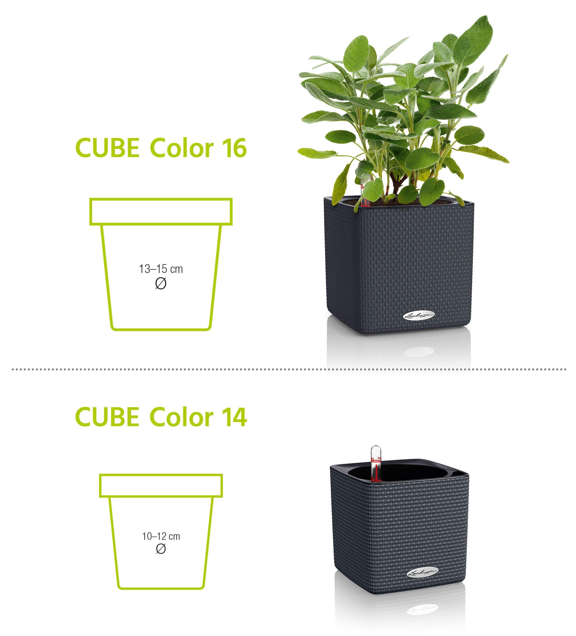 le_cube-color_product_content_02