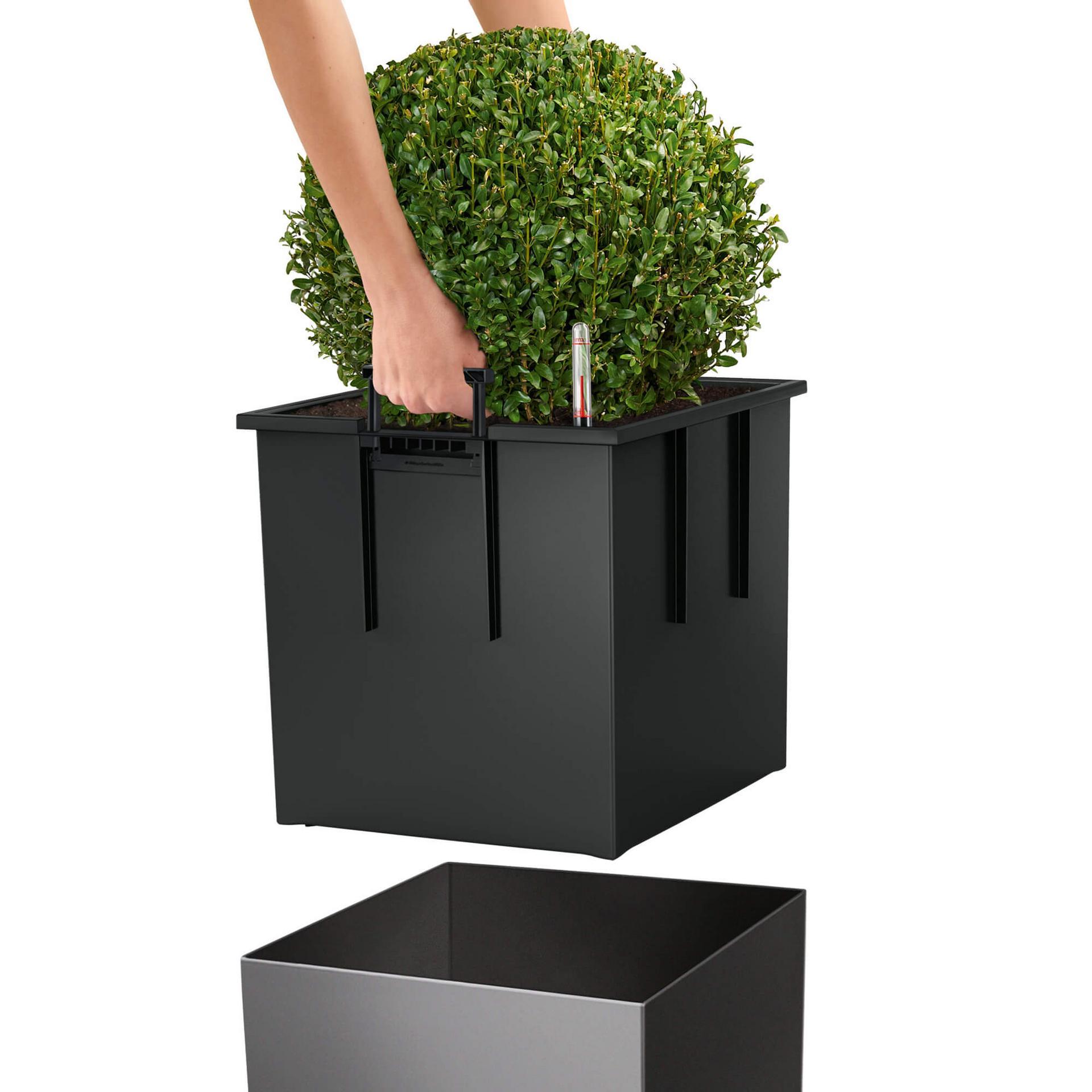 le_cube40_product_addi_liner