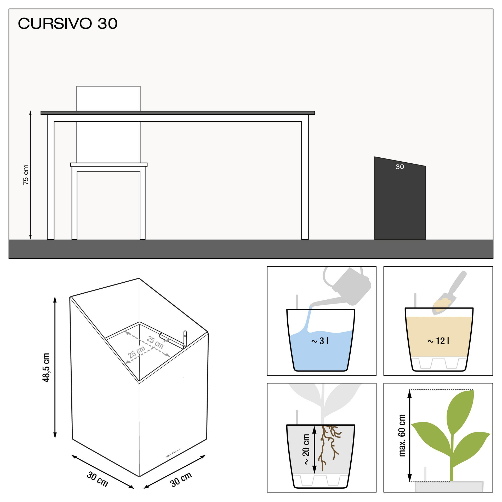 le_cursivo30_product_addi_nz