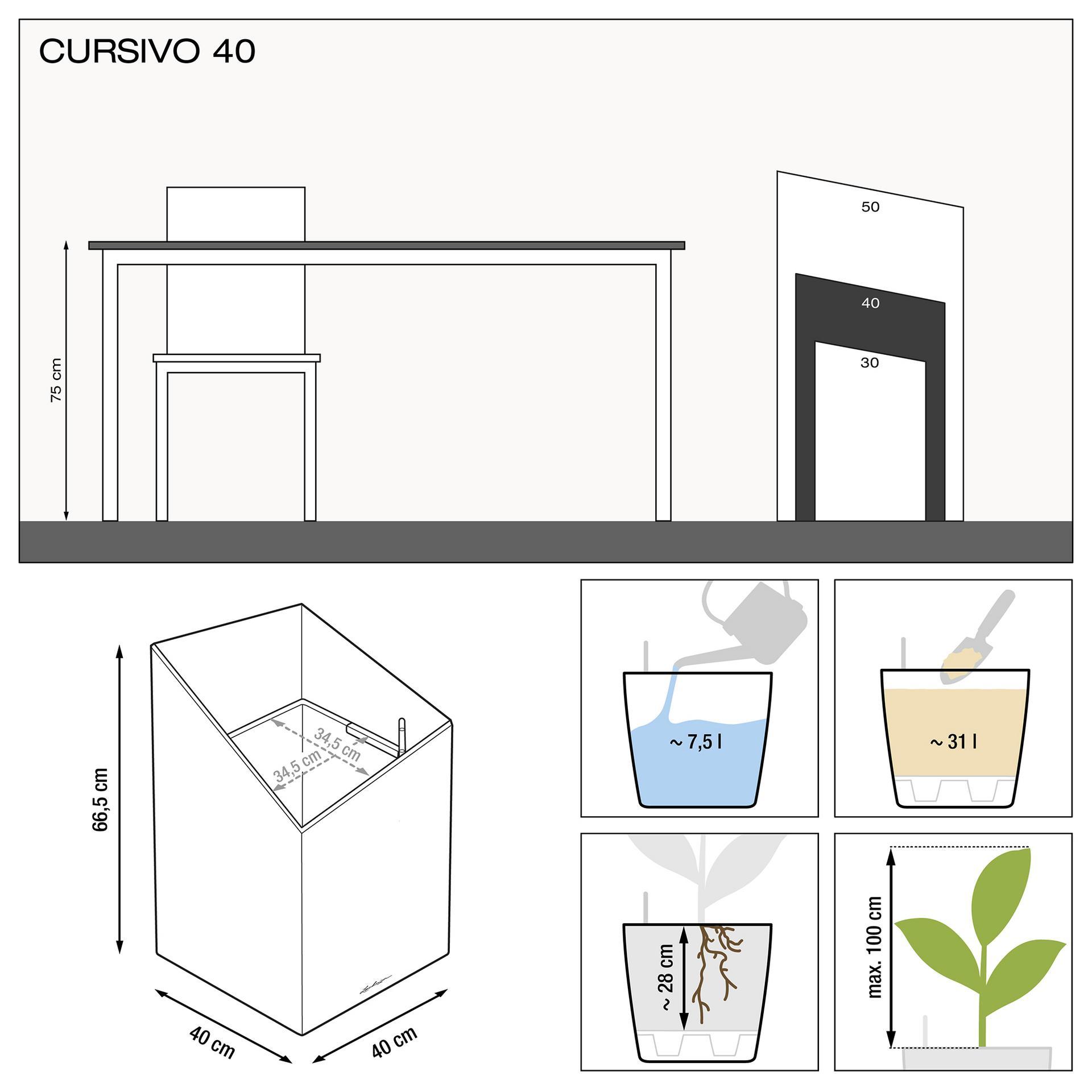 le_cursivo40_product_addi_nz