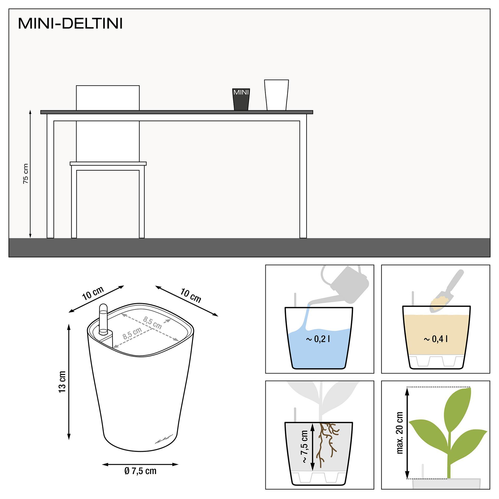 le_deltini-10_product_addi_nz