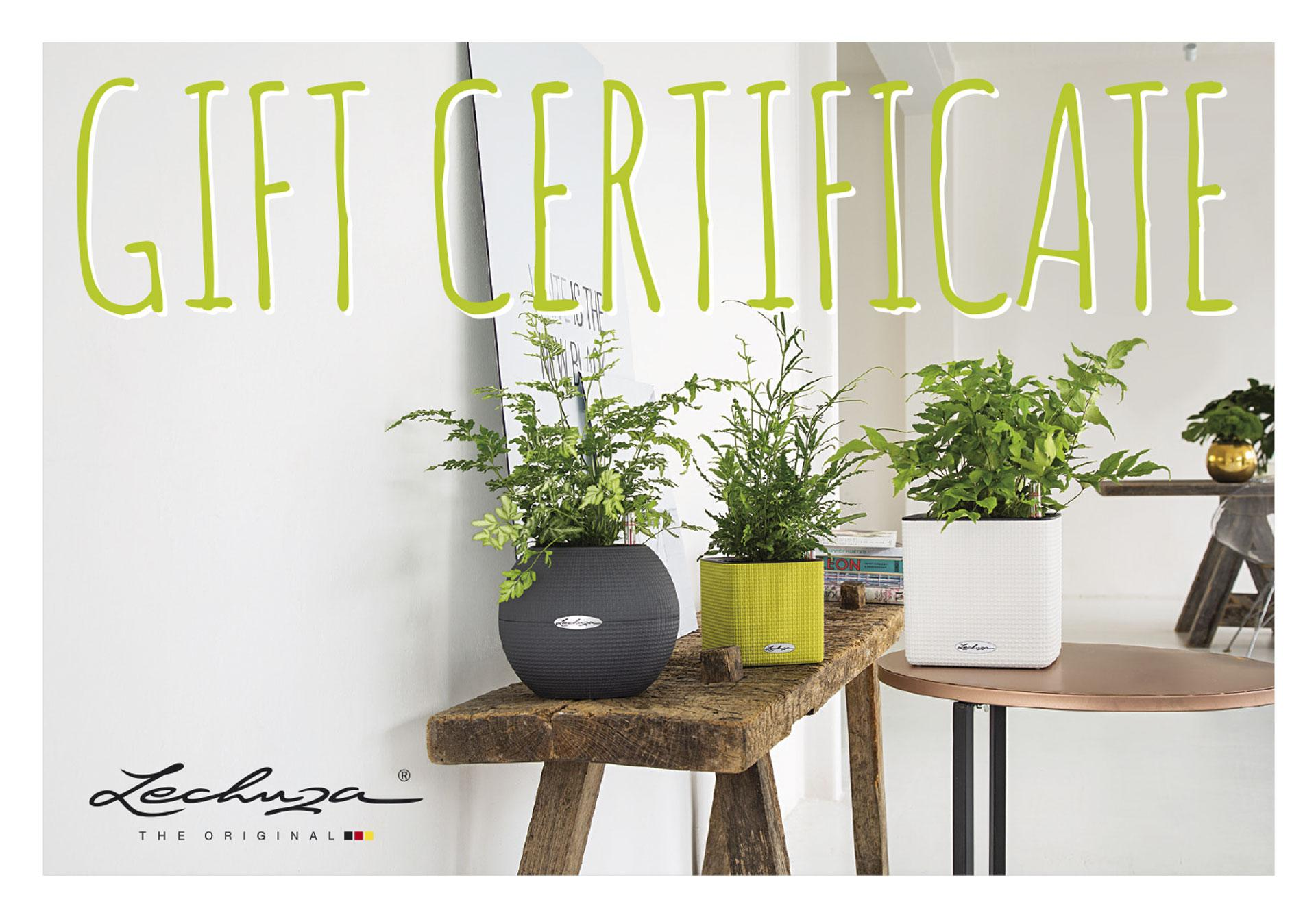LECHUZA Gift Certificate