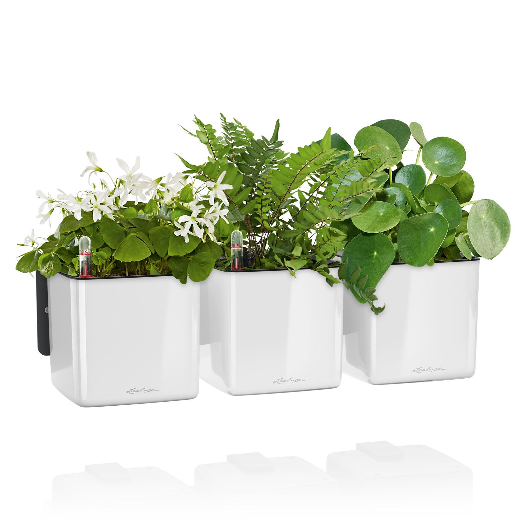 green-wall-glossy_product_listingimage