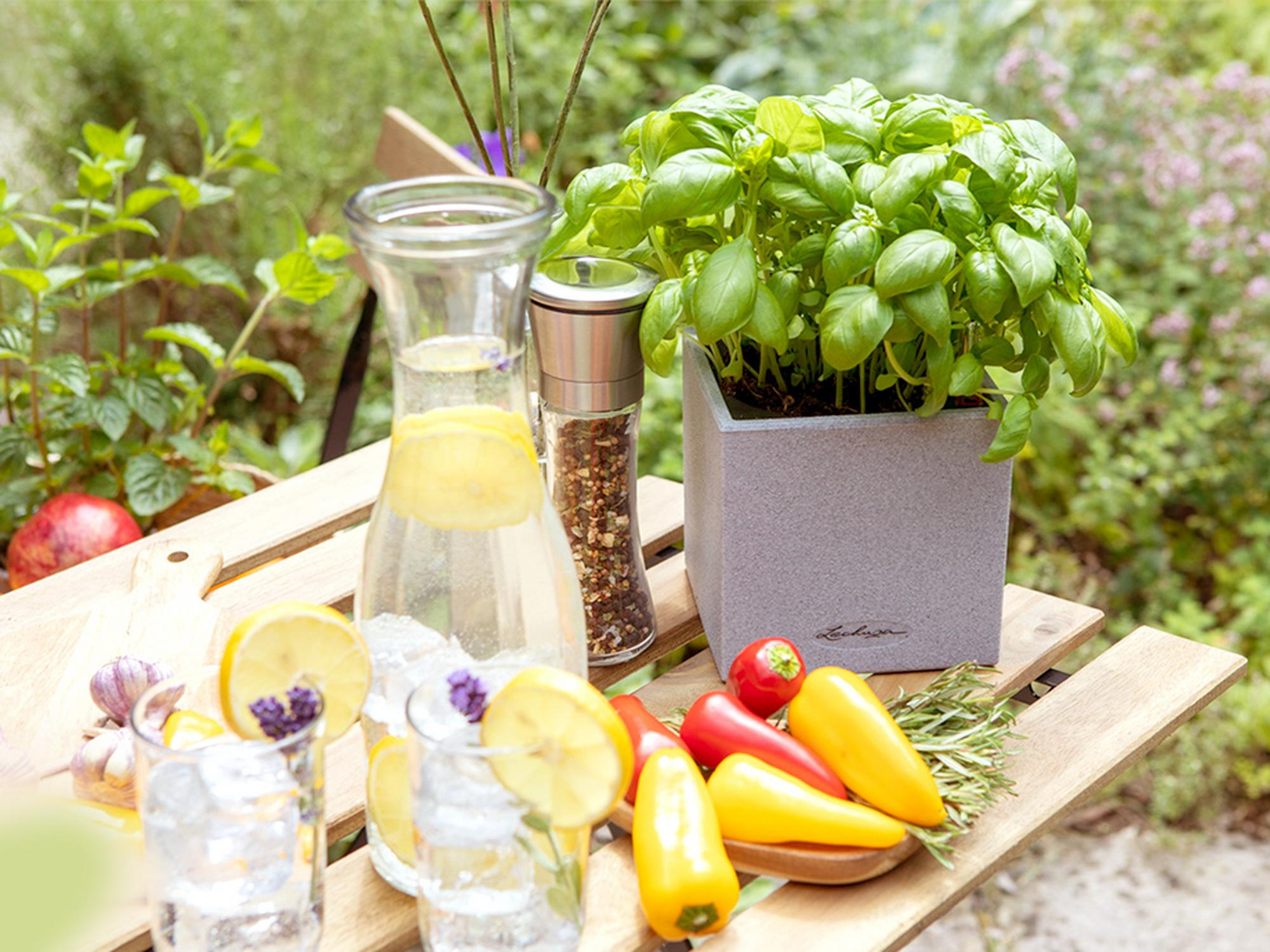 CANTO Stone 14 для цветов и кухонных трав