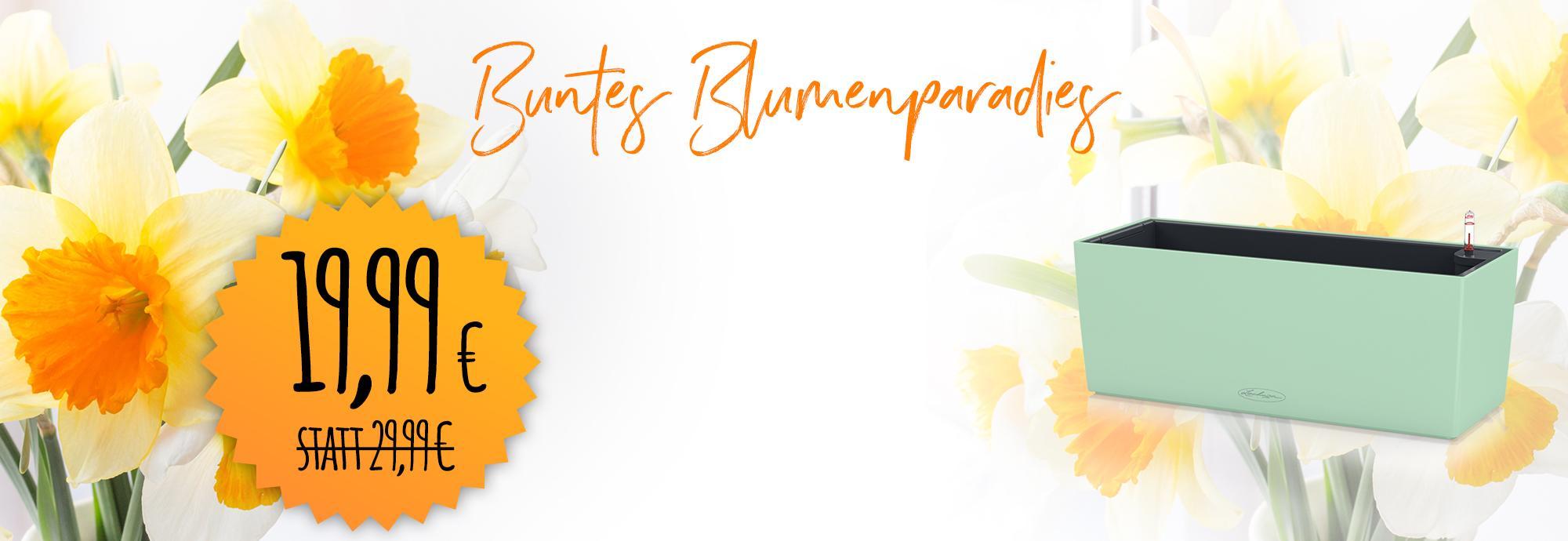 'BALCONERA Color 50 Sonderfarben für 19