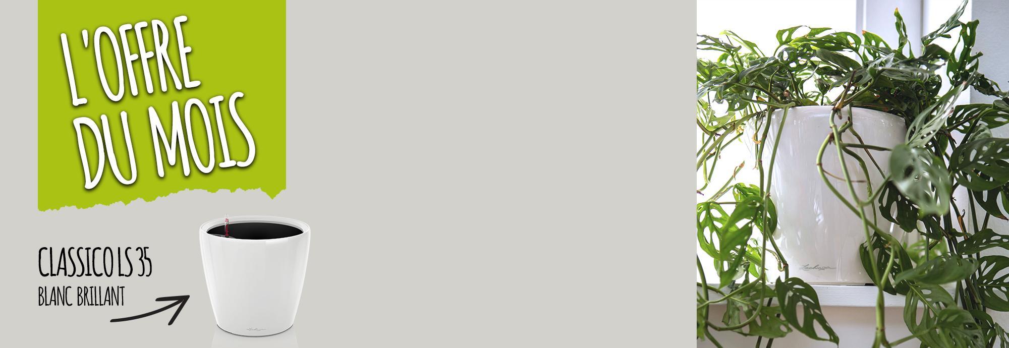 L'offre du Mois: 15% de réduction pour l'achat du CLASSICO LS 35 blanc