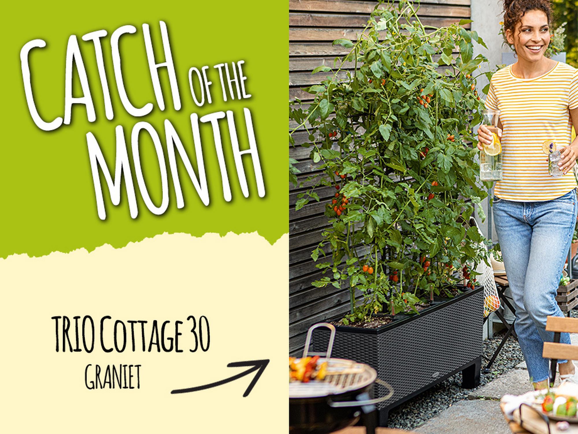 Catch of the Month: 15% korting op de TRIO Cottage 30 graniet