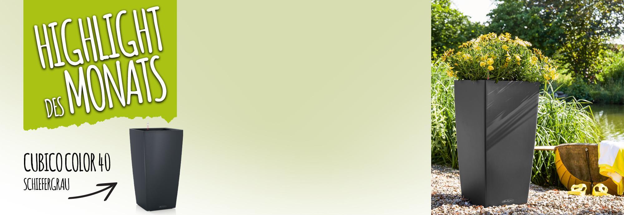 Catch of the Month: 15 Prozent sparen beim Kauf von CUBICO Color 40 schiefergrau