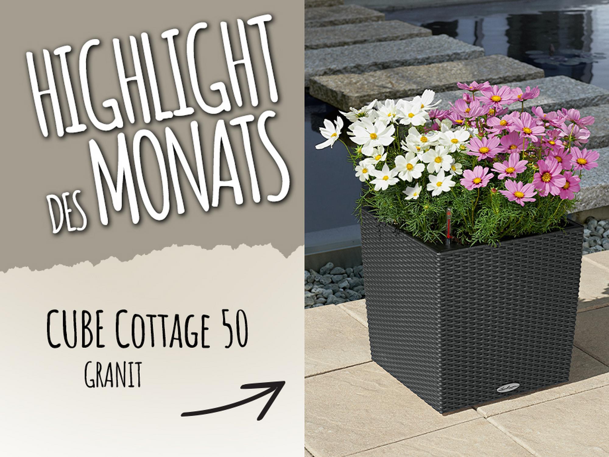 Catch of the Month: 15 Prozent sparen beim Kauf von CUBE Cottage 50 granit