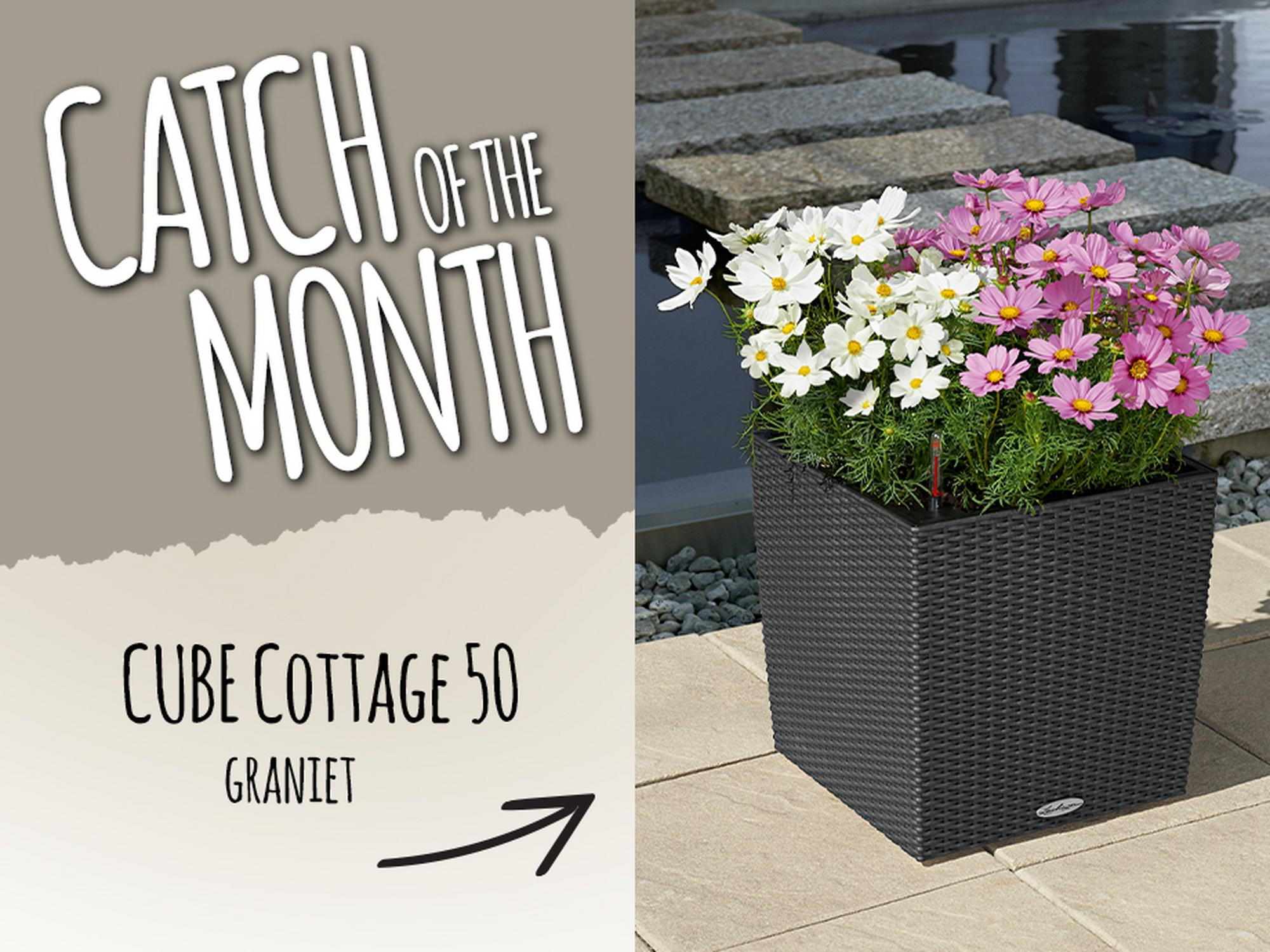 Catch of the Month: 15% korting op de CUBE Cottage 50 graniet